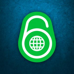 IPv6 Launch Logo
