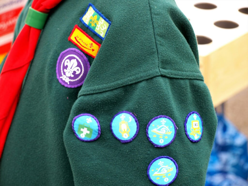 Scouts web hosting